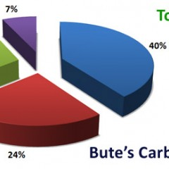 Bute's Carbon Footprint