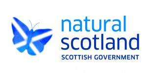 CCF5. Scottish Government logo