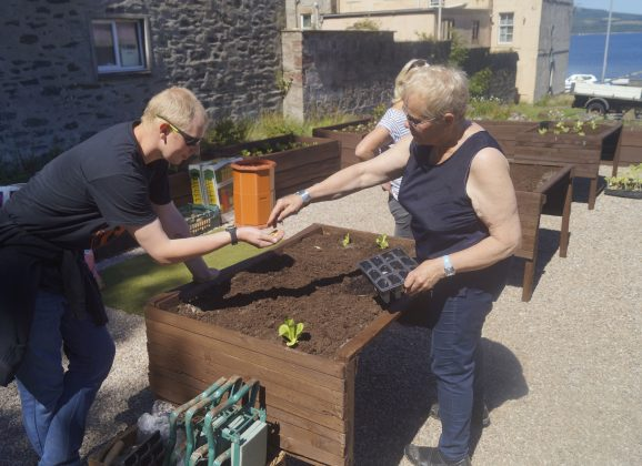 Chapel Hill accessible raised bed garden launched
