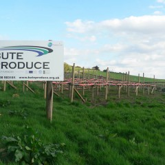 Events at Bute Produce During April
