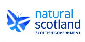 CCF5. Scottish Government logo